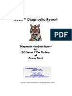 Example Diagnostic Report - Us