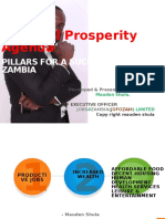 pillars for a successful zambia
