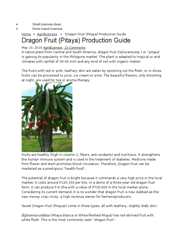 Dragon Fruit Production | Horticulture And Gardening | Agriculture