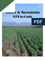 DinamicadeN-P-K-CarlosSierra.pdf