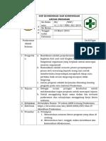 Sop Koordinasi Dan Komunikasi Lintas Program Dan Sektor