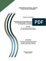 Evaluación de ocho genotipos de maíz (Zea mays L.) de polinización libre y tres tipos de fertilización en El Castillito, Las Sabanas, Madriz