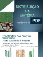 Transporte Plantas Revisões