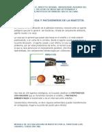 2.-EPIDEMIOLOGIA Y ETIOLOGIA DE LA MASTITIS .docx