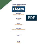 Tarea 7 - Sociologia Juridica - Aneudy