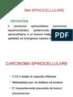 Carcinoma Spinocellulare Lezione Medicina