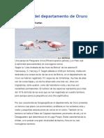 Las Aves Del Departamento de Oruro