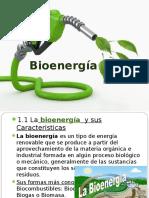 Bio Energía