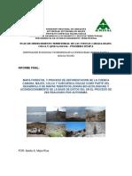 Informe Final - Mapa Forestal y de Deforestación.