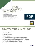 Obesidade-PDF.pdf