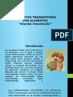 321899914-Giardia.pdf