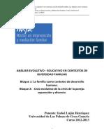 Máster. Apuntes. Análisis Evolutivo Educativo en Contextos de Diversidad Familiar