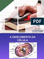 A Descoberta Da Celula