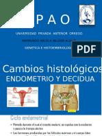 CAMBIOS HISTIOLOGICOS DECIDUA Y ENDOMETRIO