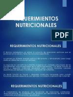 Clase # 4 Requerimientos Nutricionales