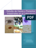 Estudio de Heces y Parc3a1sitos Intestinales en El Laboratorio