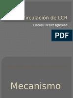 Circulación de LCR