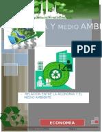 ECONOMIA-Y-EL-MEDIO-AMBIENTE.docx