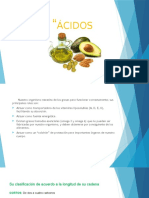 Acidos-grasos Fundamentos (1)