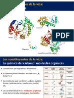 Clase 01. Biomoléculas
