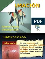 Inflamación 2015