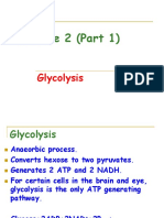 Lecture 2A Glycolysis