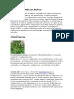 Clasificación-de-las-Drogas-de-abuso.docx
