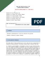 Lab N°1_Mecánica_VERSION 2_Milagros