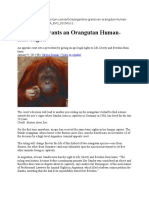 Argentina Grants an Orangutan Human-Like Rights