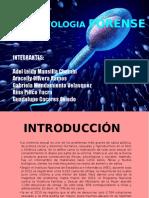 TIPIFICACION DE MANCHAS SEMINALES.pptx