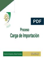 Proceso_de_Carga.pdf