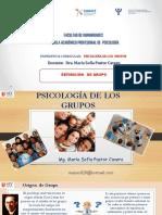 PSICOLOGÍA DE LOS GRUPOS.pdf