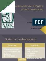 Búsqueda de Fístulas Arterio-Venosas