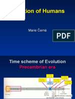 38-Evolution-of-Humans.ppt