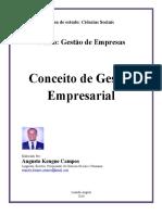 Conceito de GestÃo Empresarial - Gestao de Empresas - Ciencias Sociais (Augusto Kengue Campos)