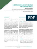 11-himenopteros_0