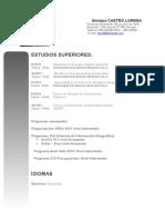 cv6.1.doc