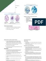 Staininglabnotes2.pdf