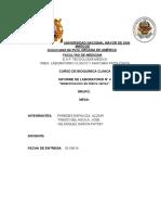 Informe Práctica 4 Fercolor