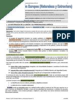 2-Unión Europea-Naturaleza y Estructura