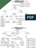 mapas conceptuales biologia