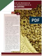 Libro Estructura de Los Procesos Planeacion y Org