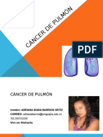 Cancer de Pulmon Expo