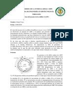 Resumen Virus Del Mosaico de La Coliflor (CaMV)