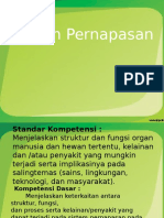 sistempernapasan-130204094138-phpapp02