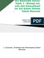 ibd  (ilmu biomedik dasar)