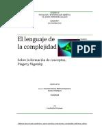 Lenguaje de La Complejidad