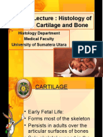 K3-Lecture Cartilage and Bone 2009