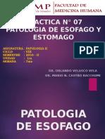 [Lab] Patología II - Esófago y Estómago