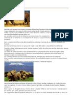 divulgación científica animales.docx